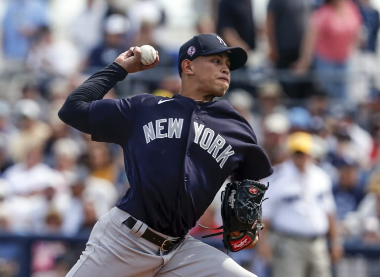 New York Yankees, Jonathan Loaisiga
