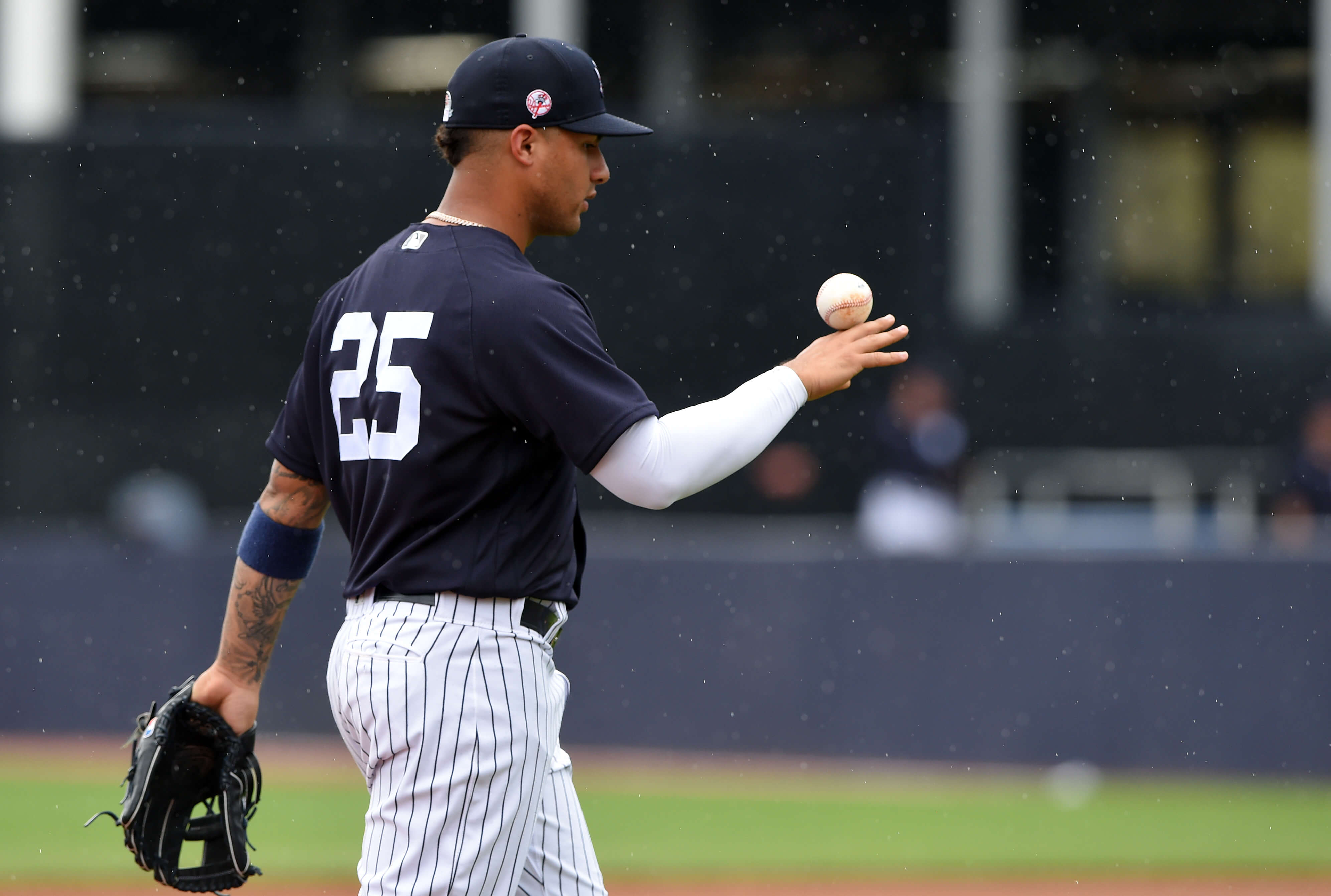 New York Yankees, Gleyber Torres