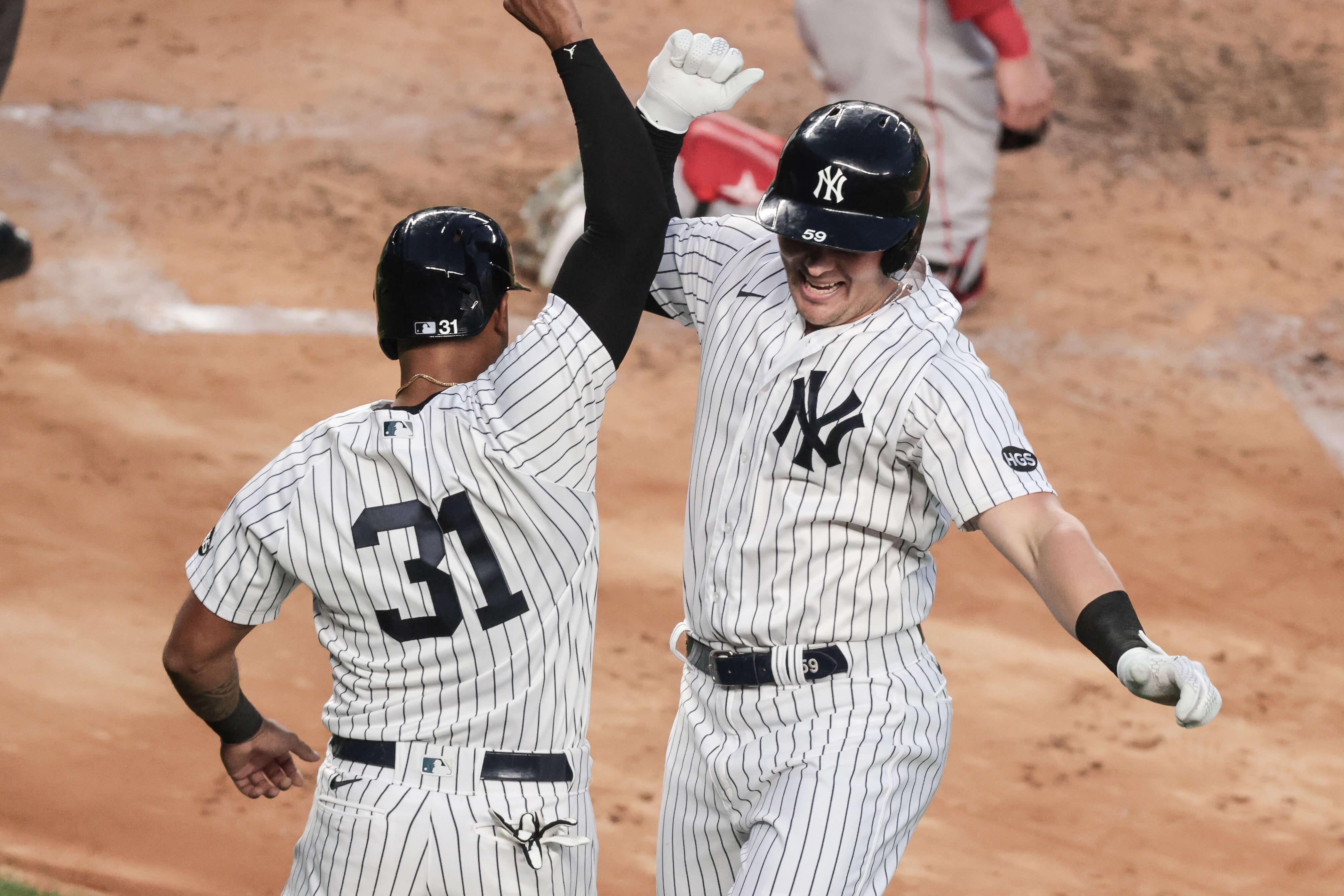 New York Yankees, Aaron Hicks, Luke Voit