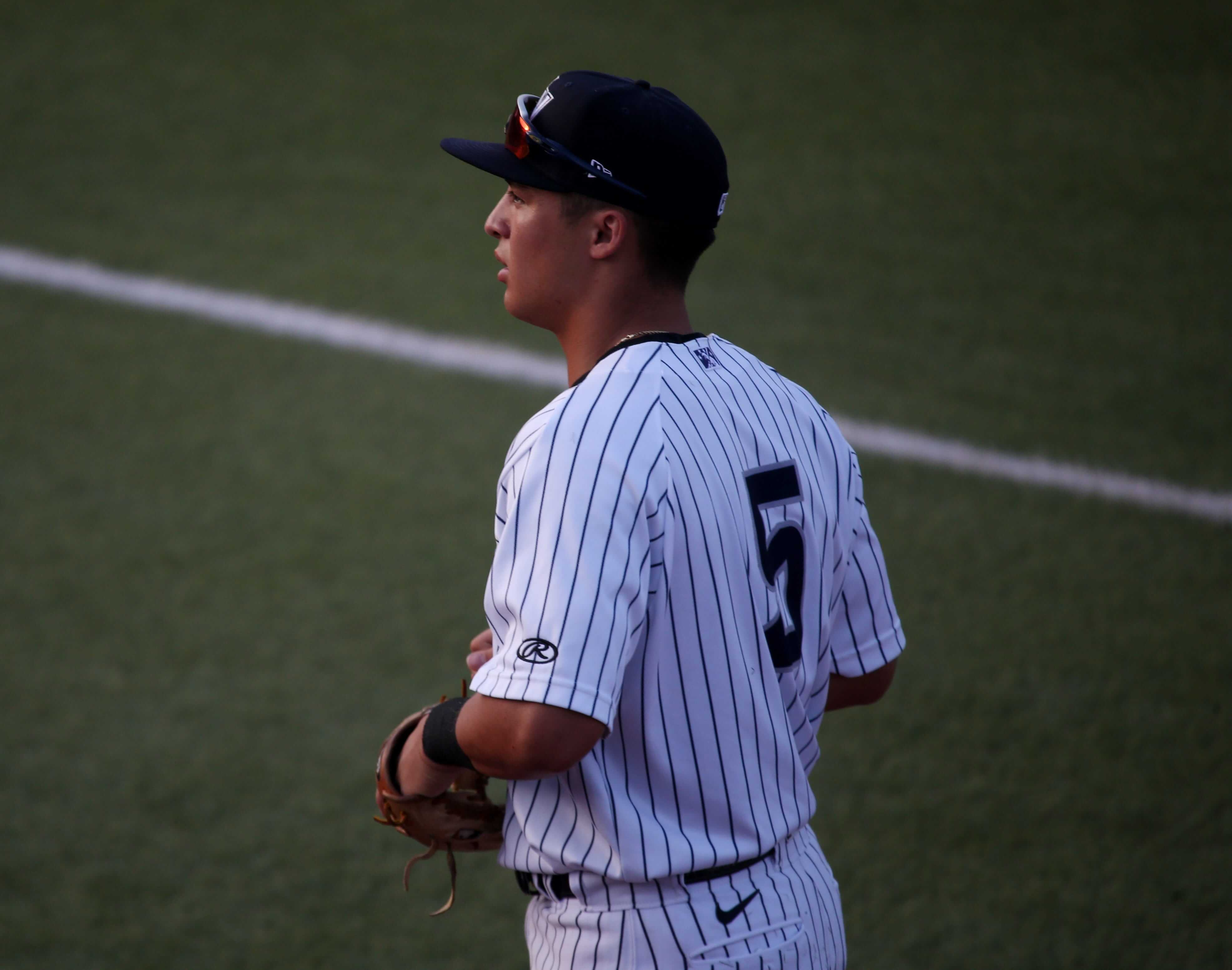 anthony volpe, yankees